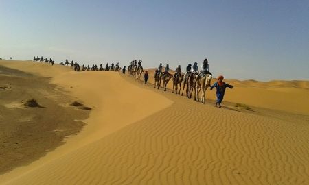 camel caravan during Marrakech adventure tours