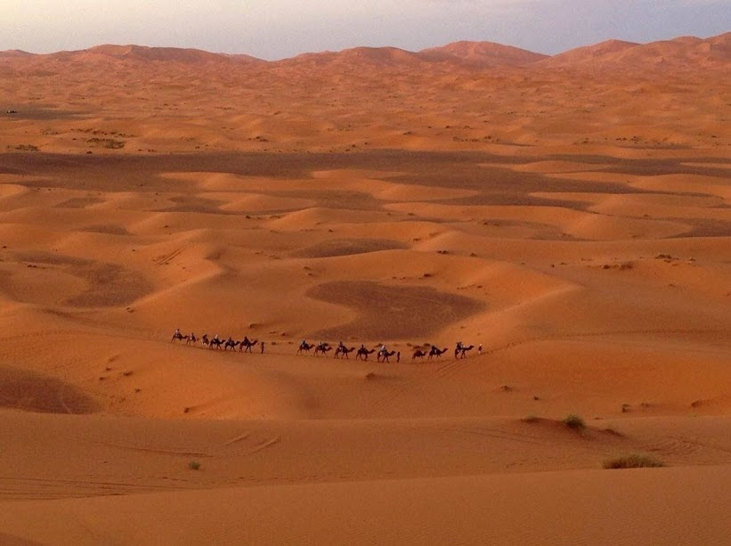 Tours - Travels - Morocco